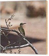 Bee-eater V15 Wood Print