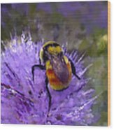 Bee Flower Wood Print by Roger Snyder