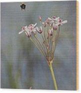 Bee Gone Wood Print