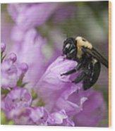 Bee Hug Wood Print