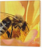 Bee In Flower Wood Print
