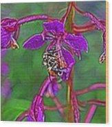 Bee In Hdr Wood Print