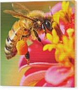 Bee Laden With Pollen Wood Print