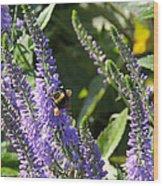 Bee Lavendar Wood Print