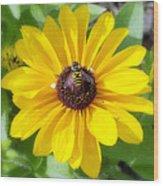 Bee Mine-2 Wood Print