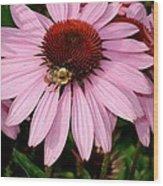 Bee Mine Wood Print