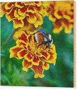 Bee My Friend Miss Marigold Wood Print