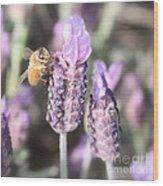Bee On Lavender Square Wood Print