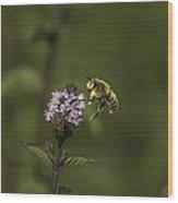 Bee Pollination Wood Print