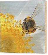 Bee-u-tiful Wood Print