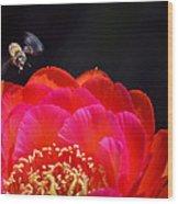 Bee Uti Full Wood Print