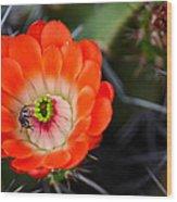 Bee Ware The Thorns Wood Print
