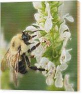 'bee'autiful Morning Wood Print