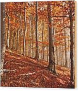 Beech Forest Wood Print