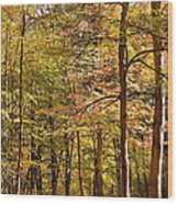 Beeches Wood Print