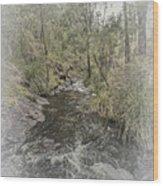 Beedelup Falls Wood Print