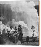 Beehive Geyser Shower In Black And White Wood Print