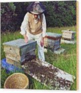 Beekeeper Hiving A Honeybee Swarm Wood Print