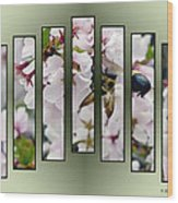 Bees And Blossoms Wood Print