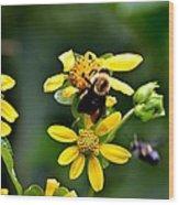 Bees At Work Wood Print