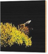 Bee's Work Wood Print
