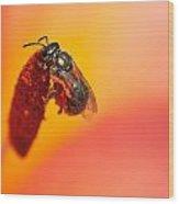 Bee's World Wood Print