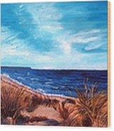 Before The Tumble At Chapin Beach Wood Print