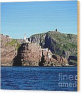 Behind Fort Amherst Rock 2 By Barbara Griffin Wood Print