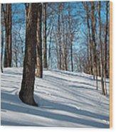 Behind Mccauley Mountain Wood Print