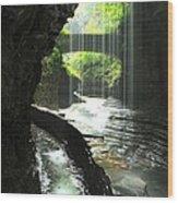 Behind Rainbow Falls Wood Print