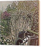 Behind The Garden Wood Print