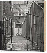 Behind The Gates Wood Print