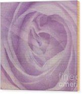 Behind The Purple Veil  Wood Print