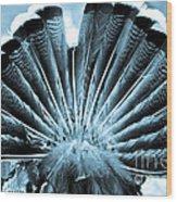 Behind Turkey Wood Print