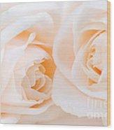 Beige Roses Wood Print by Elena Elisseeva