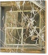 Beige Window At The End Of Winter Wood Print