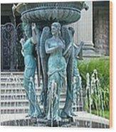 Beiger Mansion Fountain  Mishawaka Indiana Wood Print