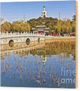 Beijing Beihai Park And The White Pagoda Wood Print