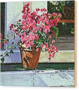 Bel-air Bougainvillea Pot Wood Print by David Lloyd Glover