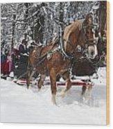 Belgian Draft Horses Pulls A Sleigh In Yosemite National Park Wood Print