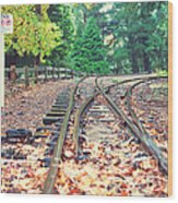 Belgrave Puffing Billy Railway Track Wood Print