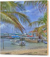 Belize Hdr Wood Print