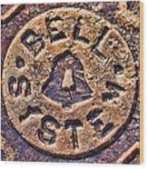 Bell Medallion Wood Print