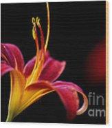 Belladonna Lily Wood Print
