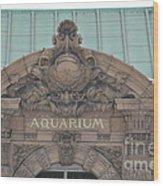 Belle Isle Aquarium Entrance 1 Wood Print