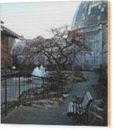 Belle Isle Conservatory Courtyard Wood Print