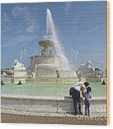 Belle Isle Fountain Splash Wood Print
