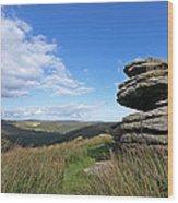 Bellever Tor On Dartmoor Wood Print