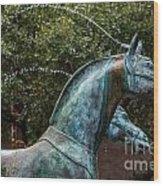Belmond Charleston Place Horse Fountain Wood Print