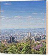 Belo Horizonte Wood Print